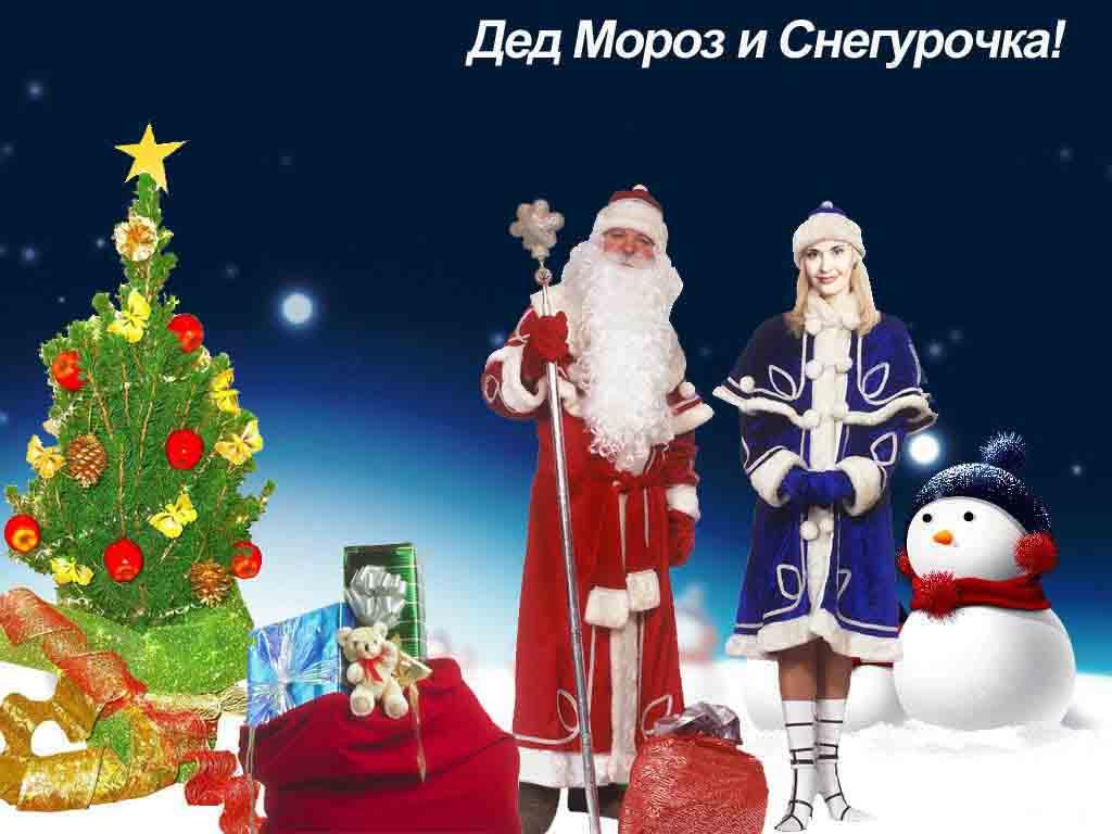 Программа на новый год для деда мороза и снегурочки